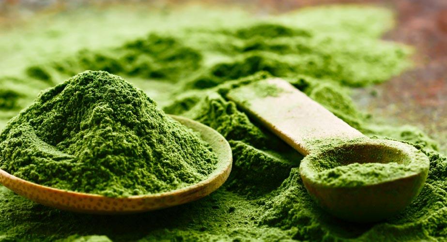 "Grünes Gekrabbel: So nachhaltig ist ""Insekten-Food"""